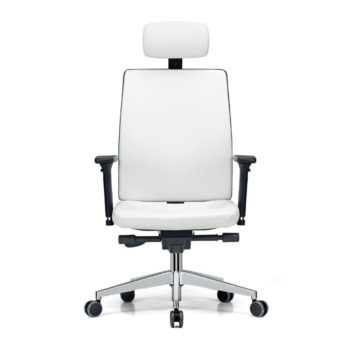 Dynamic Plus 300 office chair